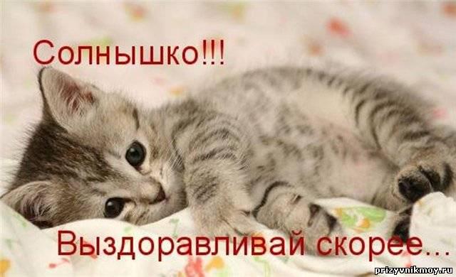 http://prizyvnikmoy.ru/_fr/7/2546343.jpg