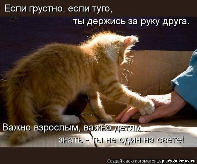 http://prizyvnikmoy.ru/_fr/7/4046766.jpg