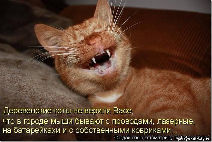 http://prizyvnikmoy.ru/_fr/7/5417985.jpg